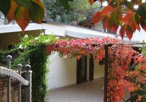 Annuncio vendita Arco Lago di Garda casa