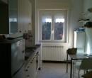 Annuncio vendita Cogorno appartamento primo piano