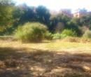 Annuncio vendita Terreno zona Trionfale localit� Lucchina