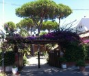 Annuncio affitto A Santa Severa villa unifamiliare