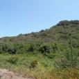 foto 2 - Lughio terreno agricolo a Nuoro in Vendita