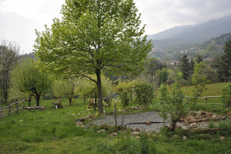 Foto 1 - Casa con giardino a Netro a Biella in Affitto