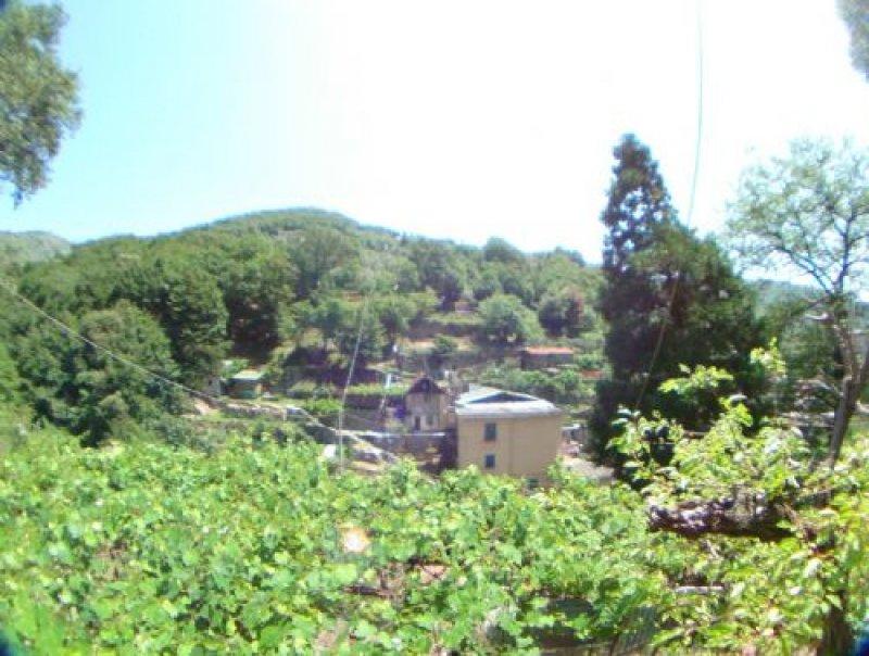 Foto 1 casa indipendente da ristrutturare nel quartiere for Casa indipendente da ristrutturare