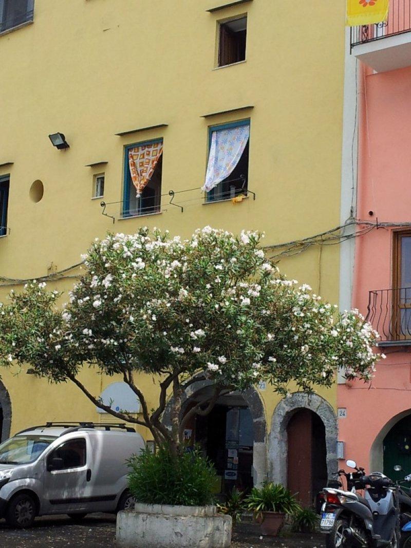 Immobile antico a Procida a Napoli in Vendita