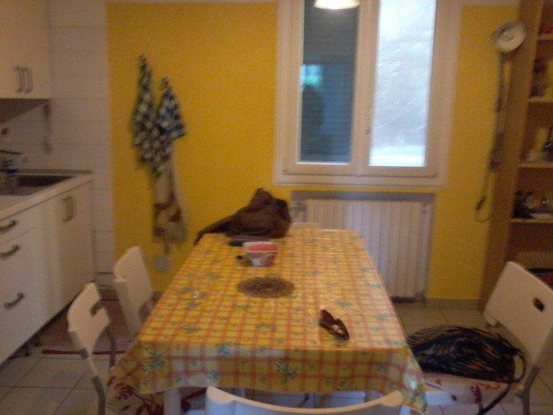 San felice offro stanza doppia a bologna in affitto for Affitto stanza bologna