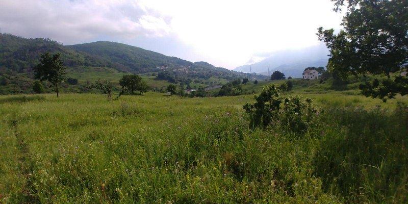 Ogliara anche permuta terreno collinare a Salerno in Vendita