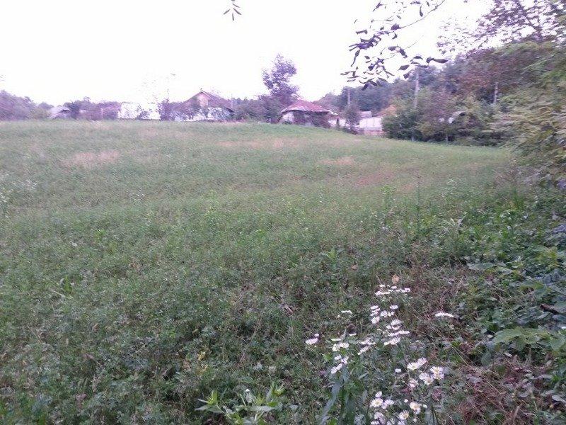 Regione di Rimnicu Vilcea terreno edificabile a Romania in Vendita