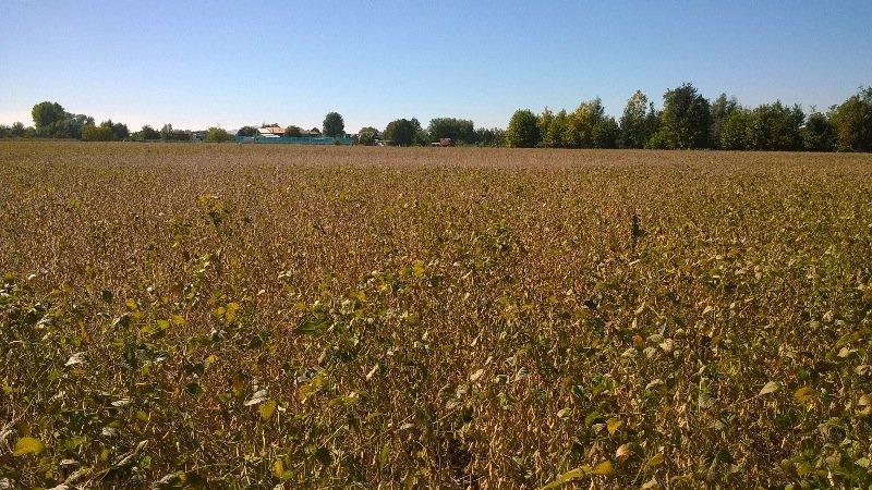 Cadoneghe terreno agricolo a Padova in Vendita