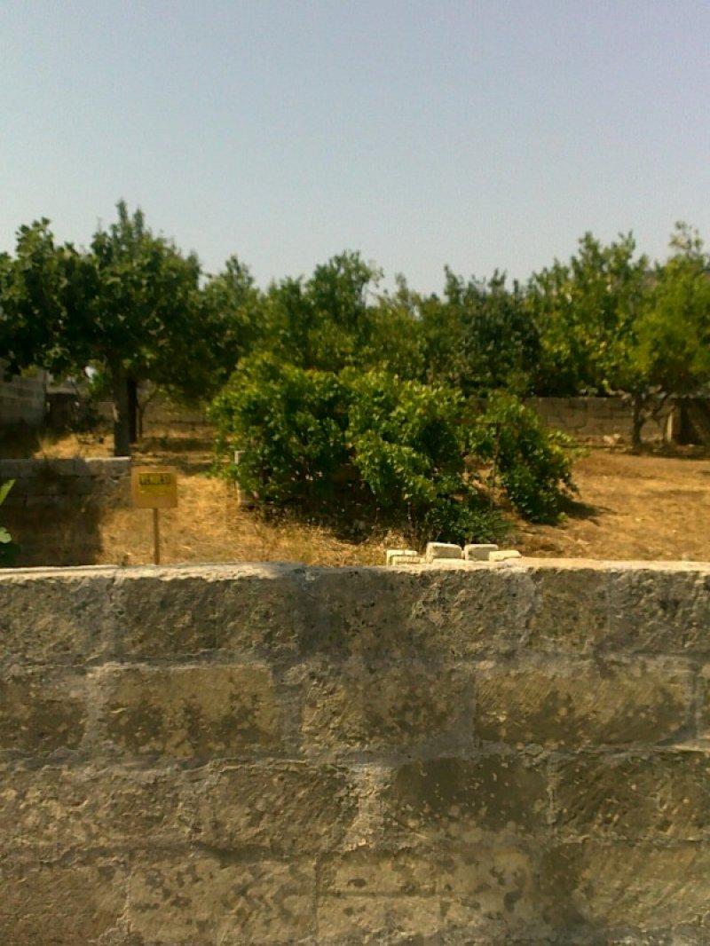 Corigliano d'Otranto terreno edificabile a Lecce in Vendita
