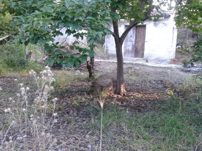 Solarino appezzamento di terreno a Siracusa in Vendita