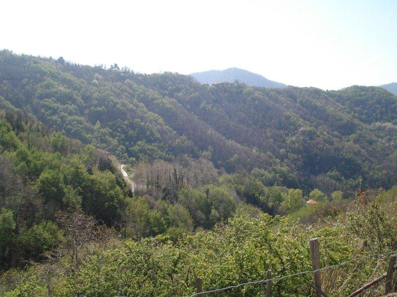 Terreno edificabile a Serra a Genova in Vendita