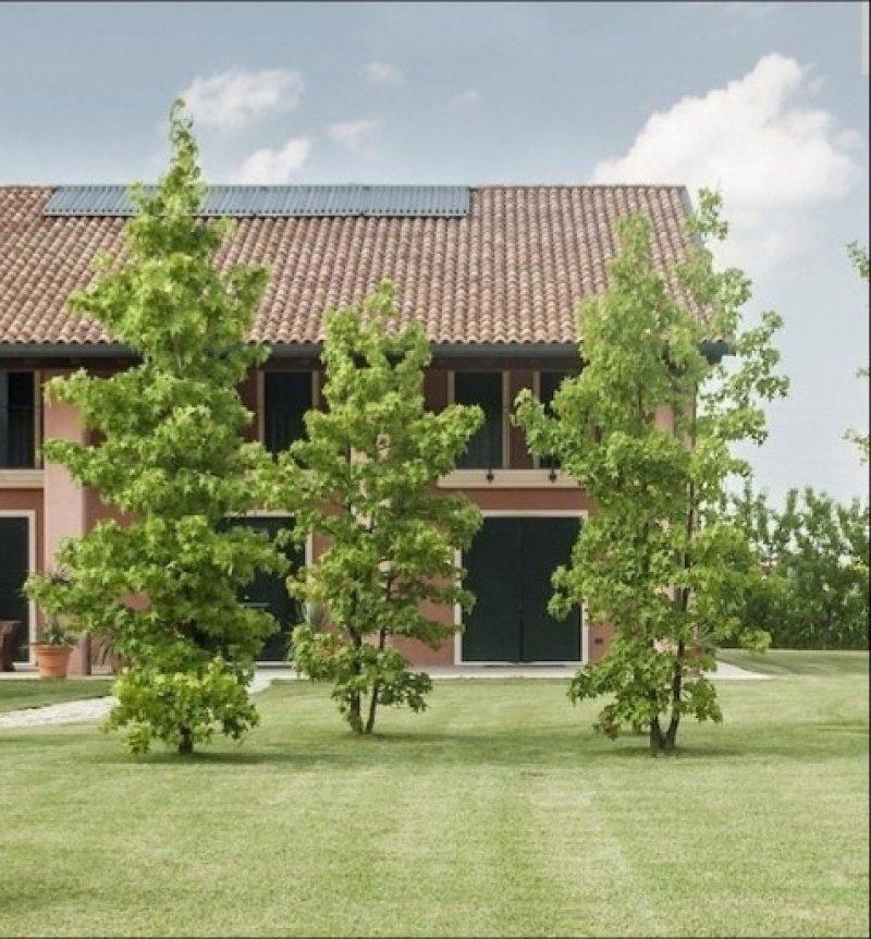 Motta di Livenza trifamiliare di nuova costruzione a Treviso in Vendita