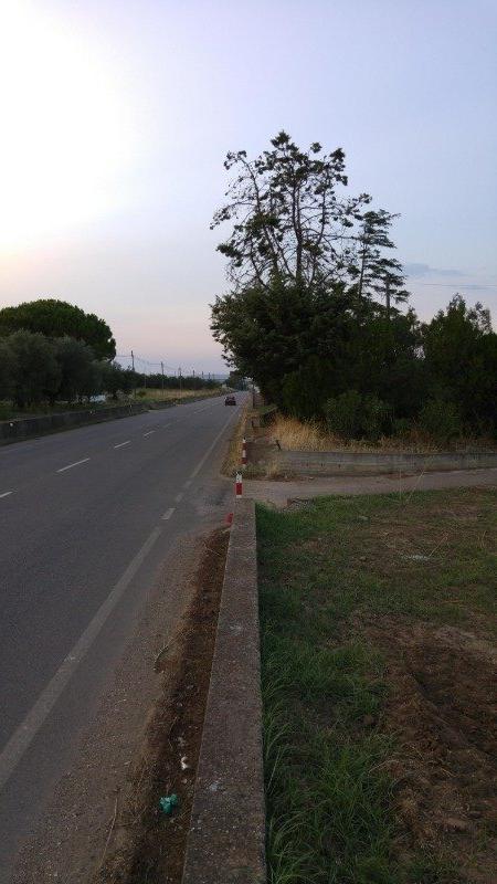 Ginosa terreno agricolo a Taranto in Vendita