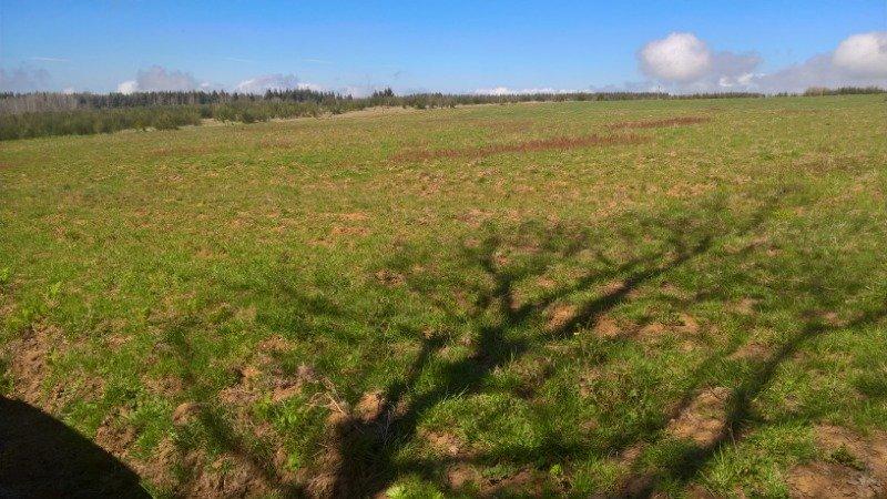 San Roberto appezzamenti di terreno agricoli a Reggio di Calabria in Vendita