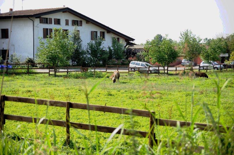 Torbole Casaglia appartamenti ammobiliati a Brescia in Affitto