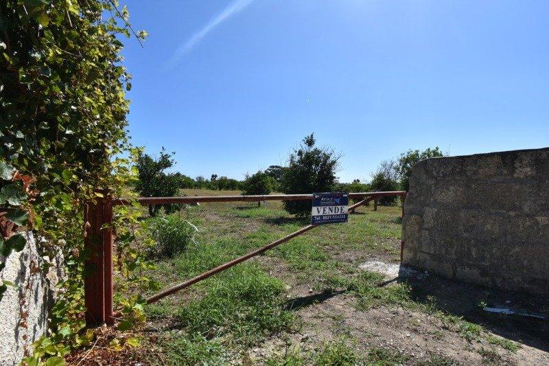 Avola in zona periferica appezzamento terriero a Siracusa in Vendita