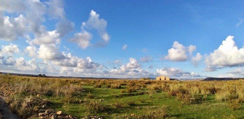Castelvetrano terreno con vista sulla diga Delia a Trapani in Vendita