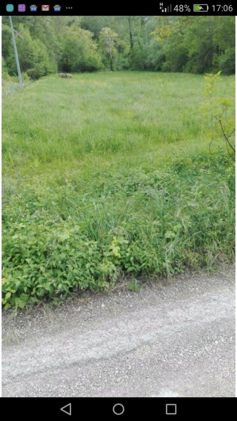 Pratola Peligna terreno agricolo pianeggiante a L'Aquila in Vendita