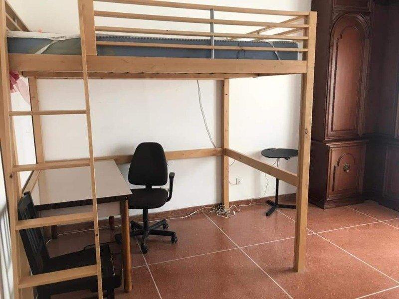Bologna spaziose camere luminose ad uso singola a Bologna in Affitto