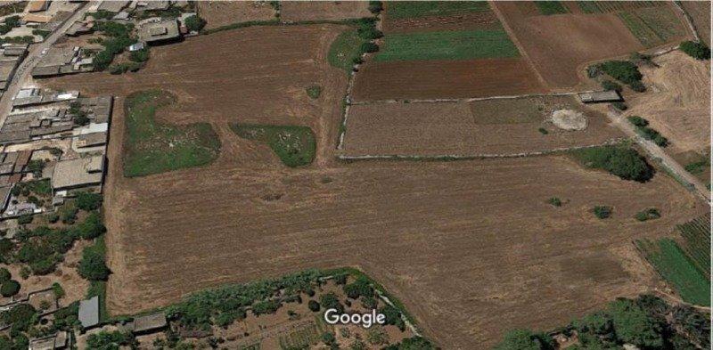 Minervino di Lecce terreno pianeggiante a Lecce in Vendita