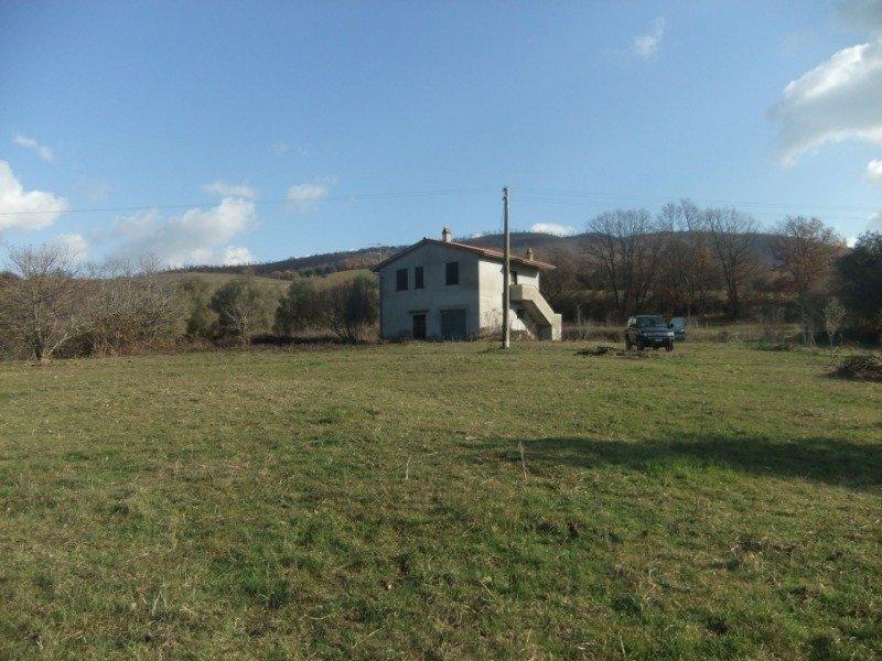 Blera Civitella Cesi azienda agricola a Viterbo in Vendita