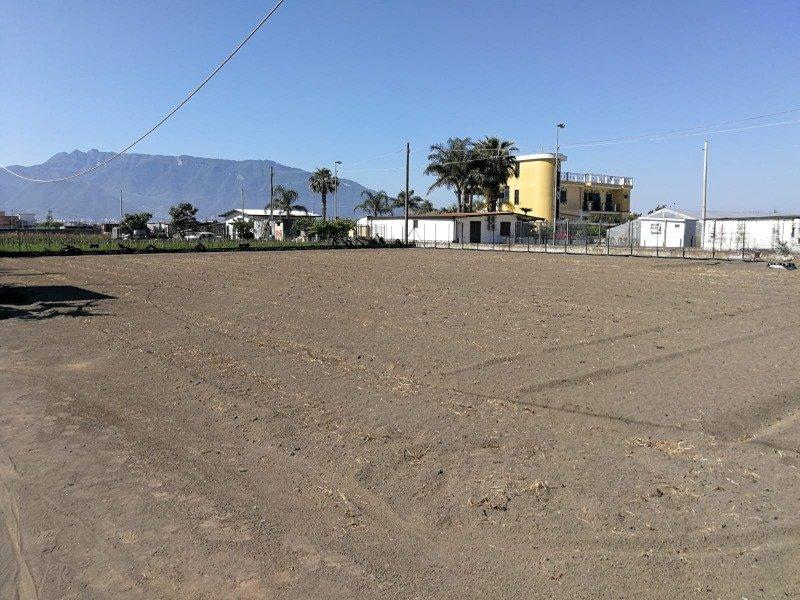 Pompei un moggio di terreno agricolo a Napoli in Vendita
