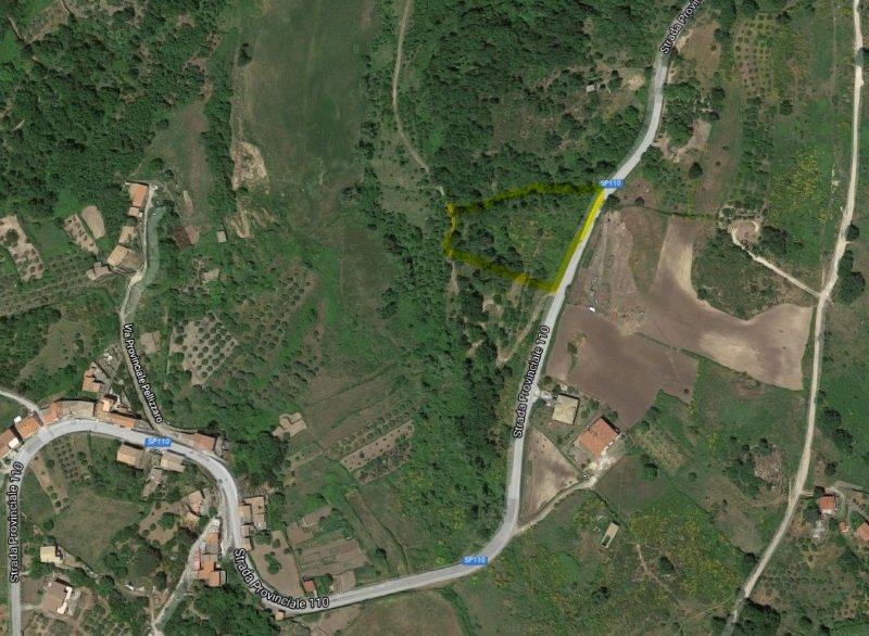 Terreno querceto noccioleto Toscano Montalbano a Messina in Vendita