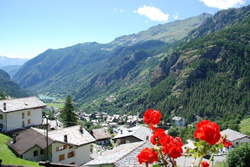 Valtournenche località Bringaz chalet con giardino a Valle d'Aosta in Affitto