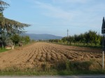 Annuncio vendita Terreno a Monte San Savino