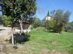 Annuncio vendita Terreno edificabile con pozzo a Monte San Savino