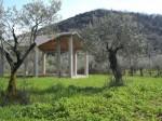 Annuncio vendita Terreno panoramico con ulivi e rustico in cemento