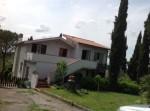 Annuncio affitto Appartamento in villa tra Monterotondo e Mentana