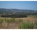 Annuncio vendita Terreno edificabile a Monte San Savino