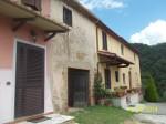 Annuncio vendita Da privato oliveta sulle colline del Montalbano