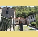 Annuncio vendita Rustico per attività turistica a Capannori