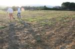 Annuncio vendita Appezzamento di terreno a Monte San Savino
