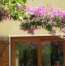 foto 4 - Casa indipendente a Teulada a Cagliari in Affitto