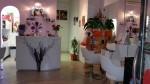 Annuncio vendita Attività parrucchiere zona Novoli