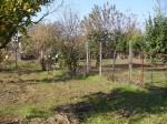 Annuncio vendita Macerata Campania terreno agricolo
