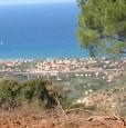 foto 3 - Terreno agricolo oliveto tra Lascari e Gratteri a Palermo in Vendita