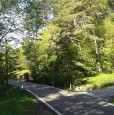 foto 2 - Faedo lotto di terreno località Pineta a Trento in Vendita
