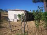 Annuncio vendita Località Cerretello casale
