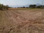 Annuncio vendita Benevento terreno
