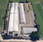 Annuncio vendita Fabbricato rurale diruto in San Tammaro