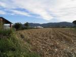 Annuncio vendita Casenuove di Masiano terreni a vivaio