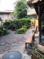 Annuncio vendita Monte Porzio Catone appartamento con giardino