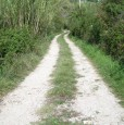 foto 6 - Villino arredato a Genazzano in Val Morano a Roma in Vendita