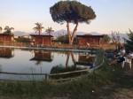 Annuncio affitto Terzigno laghetto di pesca sportiva