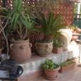 foto 6 - Mondello Valdesi villetta a Palermo in Affitto