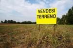 Annuncio vendita Castiglion Fibocchi terreno edificabile